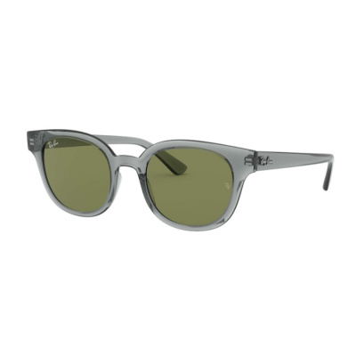 Ray-Ban Transparent Grey Zonnebril RB432464504E50