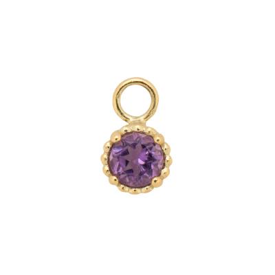 ANNA + NINA 14 Karaat Gouden Solid Gold Birthstone February Single Oorbedel 19-3M904002G