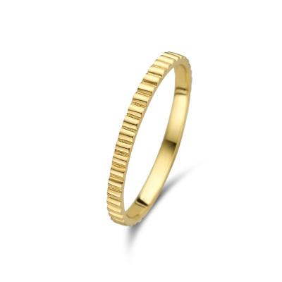 Isabel Bernard Le Marais 14 Karaat Gouden Ring IB330005
