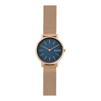 Skagen Signatur horloge SKW2837